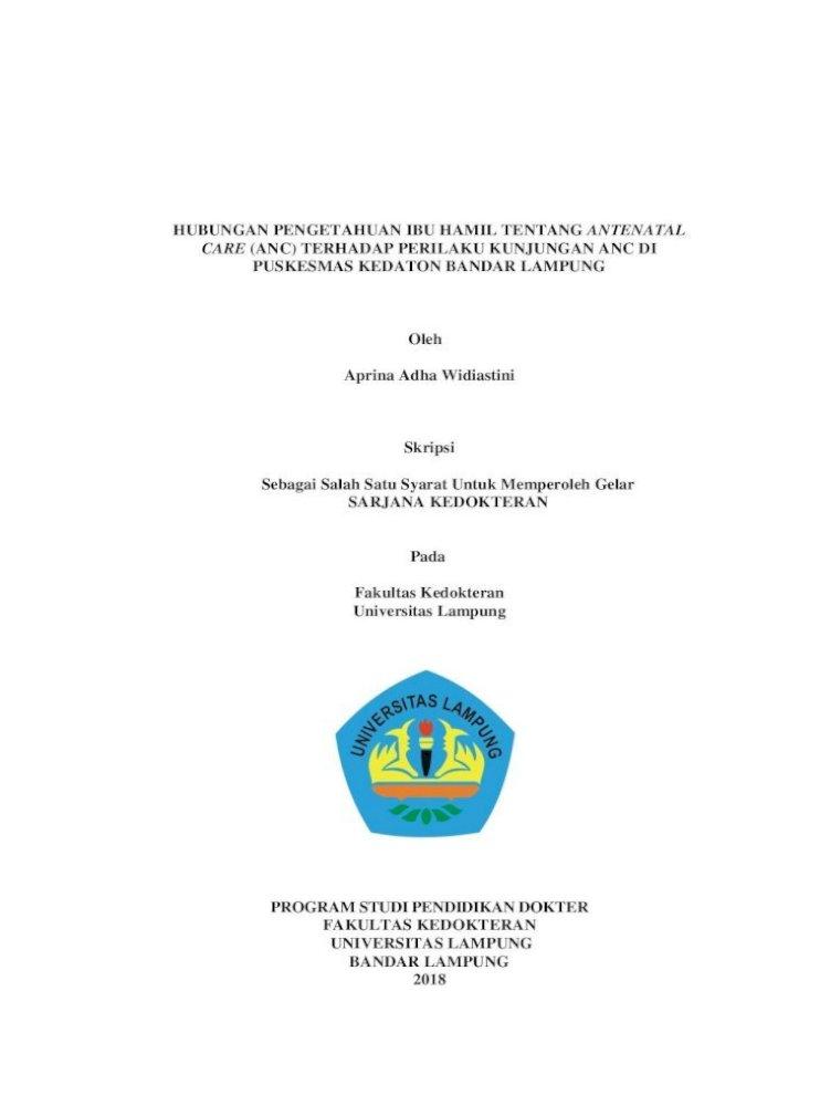 Hubungan Pengetahuan Ibu Hamil Tanpa Bab Pengetahuan Ibu Hamil Tentang Antenatal Pdf Document