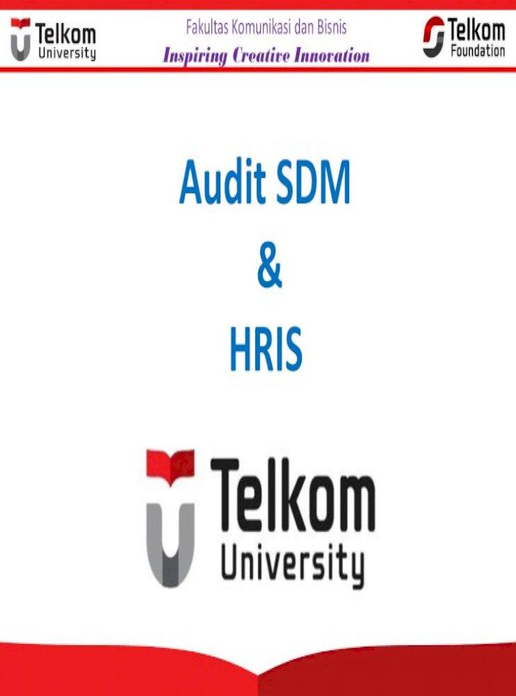 Audit Sdm Hris Audit Sdm Pemeriksaan Dan Penilaian Secara Sistematis Objektif Dan Terdokumentasi Pdf Document